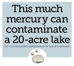 Mercury-Poisoning