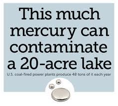 Mercury-Poisoning